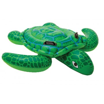 Ride on Turtle