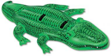 Ride on Gator